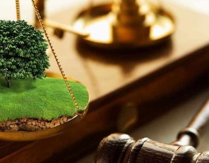 земля суд